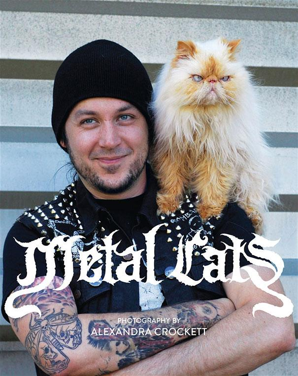 metal-cats-alexandra-crockett-11
