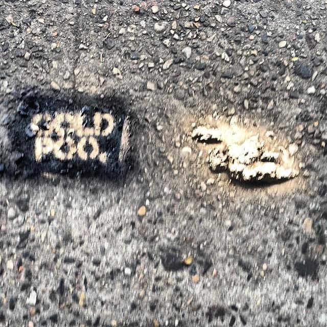 Art insolite : des crottes de chien transformées en street art