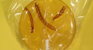 WTF : les bonbons aux insectes