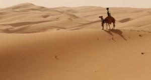 Google a mis une caméra sur le dos d'un dromadaire pour cartographier le désert
