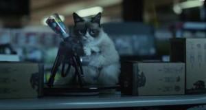 [Vidéo] Grumpy Cat, le film : première bande-annonce