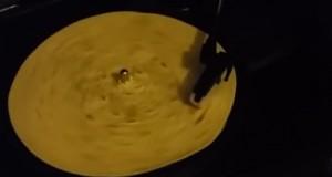 Quel son émet une tortilla sur une platine vinyle ?