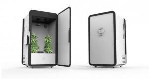 Leaf, l'armoire connectée pour cultiver vos plants de cannabis